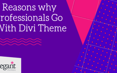 6 Reasons Why Professionals Go With Divi Theme?